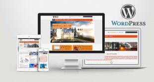 5 Temas para Wordpress