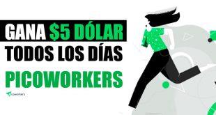 Picoworkers Paga